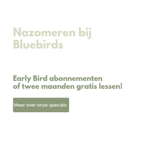 Homepage - Bluebirds