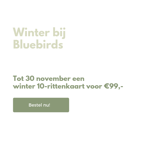 Homepage - Bluebirds (1)