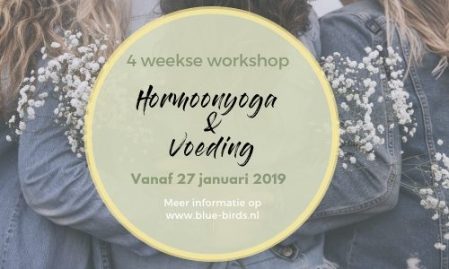 4-weekse workshop Hormoonyoga & Voeding bij Bluebirds