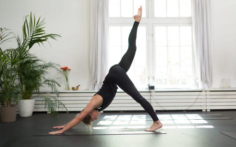 Prive yogales Amsterdam Bluebirds -2